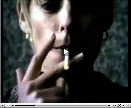 Every cigarette is doing you damage--Lung